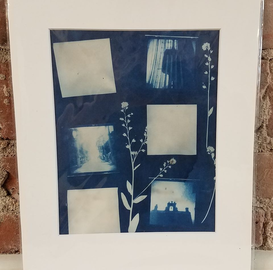 Puerto Rico Holga Film Camera Cyanotypes