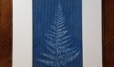 Massachusetts Fern on Corrugated Art Paper