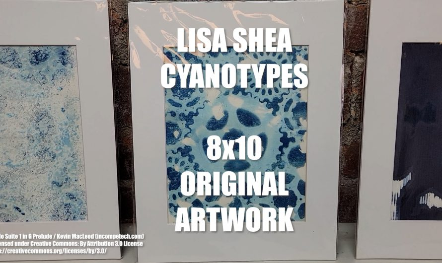 Cyanotypes at the BVAA Uxbridge Art Gallery